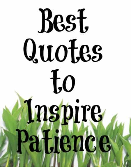 god and patience For most of us, patience does not come naturally - but with god's help we can  work at it one of the keys to becoming more patient is seeking to understand.